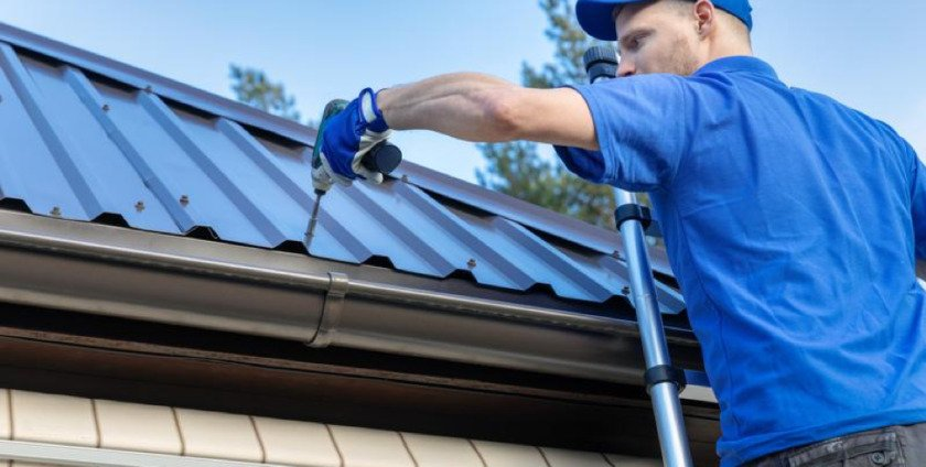Why Roof Maintenance is Key to Keeping Pests Out of Your Home